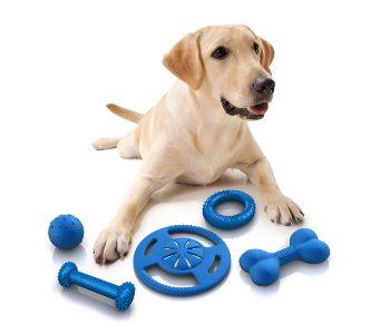 Hundespielzeug