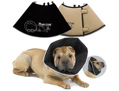 beschermkraag-hond