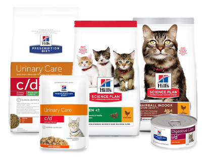 aliments pour chats hill's