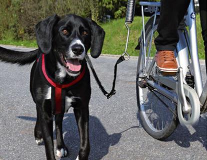 trixie-fahrradanhaenger-hund